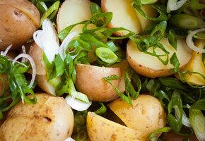 10 весенних салатов с молодым картофелем