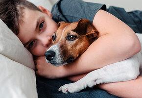 «Я с тобой»: маленький ребенок бросился утешать собаку, испугавшуюся грозы