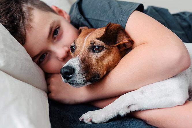«Я стобой»: маленький ребенок бросился утешать собаку, испугавшуюся грозы