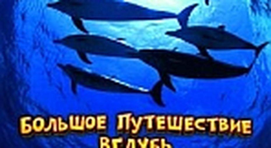 Океан вполном объеме