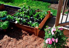 Копать не нужно! 10 классных идей по обустройству огородных грядок