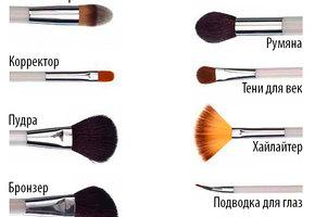 Кисти для макияжа: полный гид по выбору и уходу