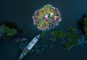 Невозможно поверить! 6 поразительно красивых фото, которые были сделаны с помощью дронов