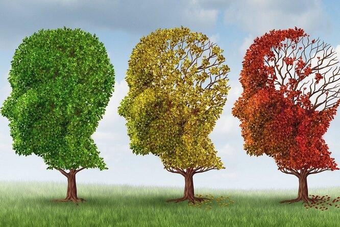 8 простых правил, которые помогут снизить риск деменции. Нацелых 35%!
