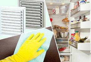 Неприятные запахи в доме, откуда они? Скрытые источники