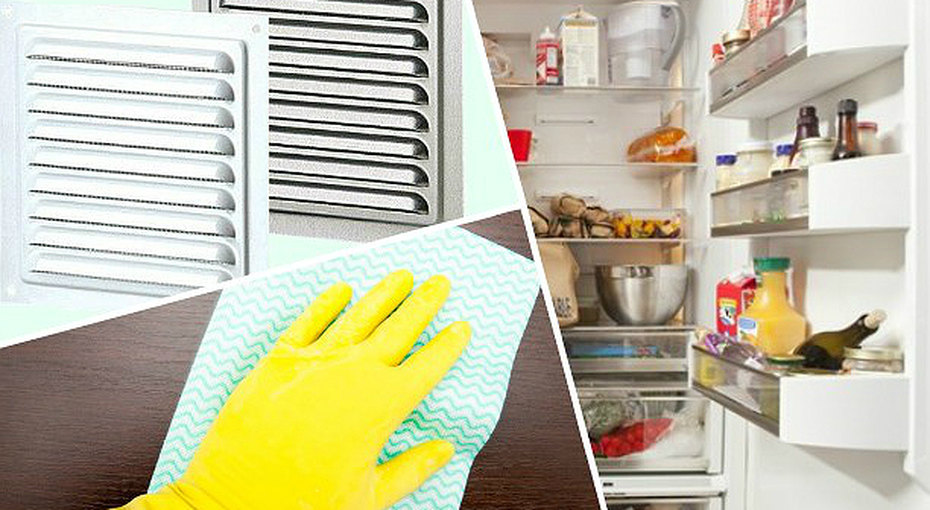 Неприятные запахи вдоме, откуда они? Скрытые источники