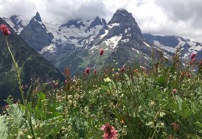 Как я влюбилась в Северный Кавказ