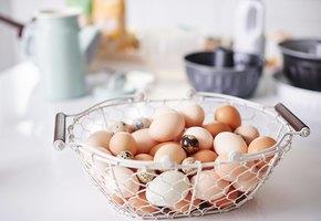 Что будет, если есть слишком много яиц?