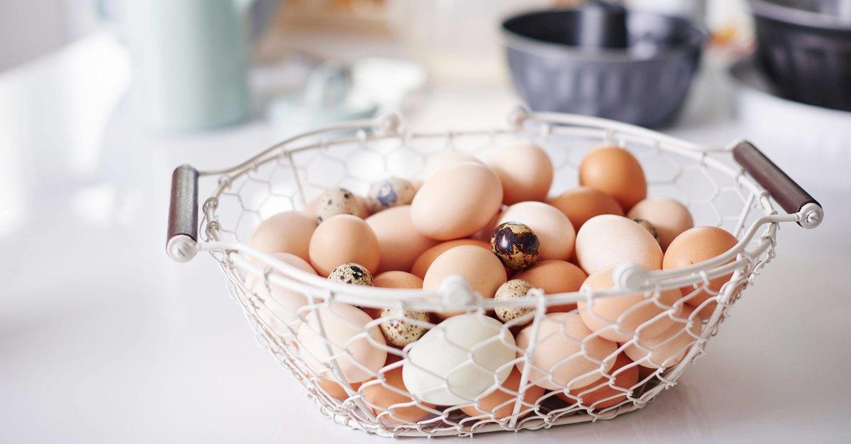 Что будет если есть одни яйца