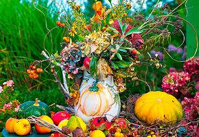Как подготовить сад к осеннему сезону