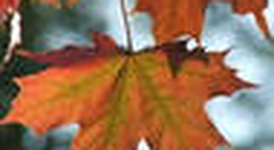 Гороскоп наоктябрь