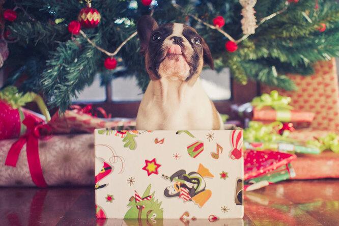 Лучшие идеи подарков кНовому году. Мы желаем вам...
