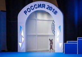 Фестиваль для владельцев собак –  2-4 ноября в Москве