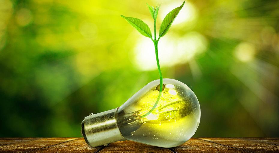 17 полезных привычек, которые помогут улучшить экологию