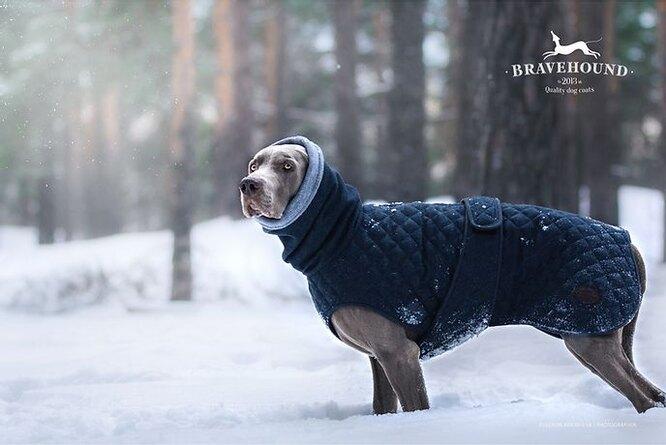 Теплая зимняя куртка Bravehound