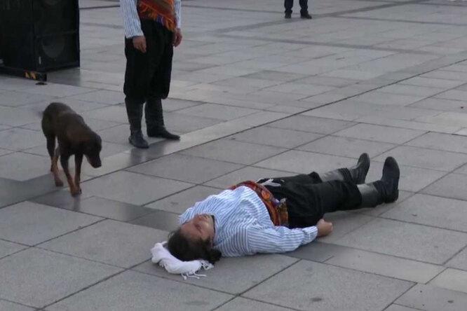 Станиславский сказал бы: верю! Собака кинулась жалеть актера во время спектакля