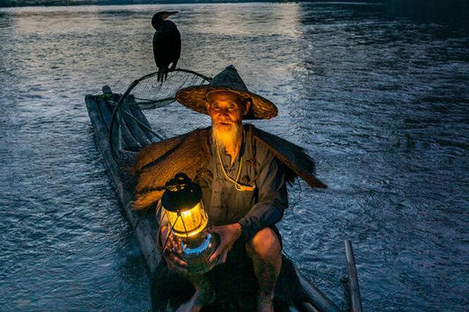 Эко-подход или насилие? Китайский рыбак использует старинный способ ловли рыбы