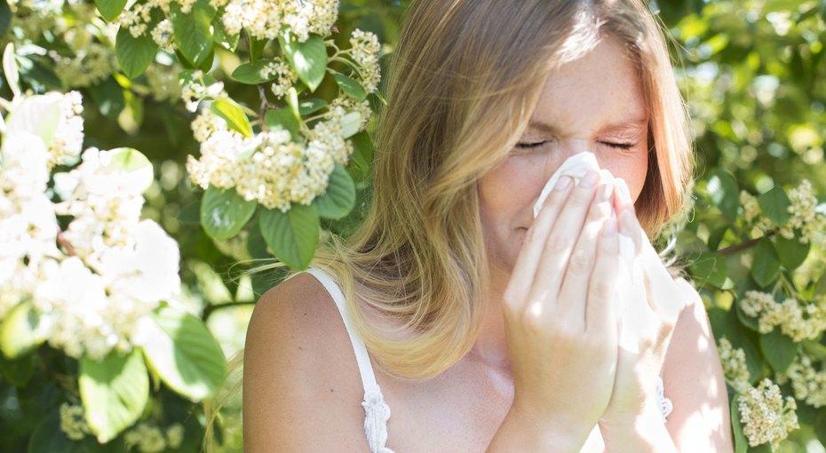 8 домашних растений, вызывающих аллергию - даже если увас ее никогда небыло