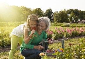 8 уроков от бабушек на все случаи жизни
