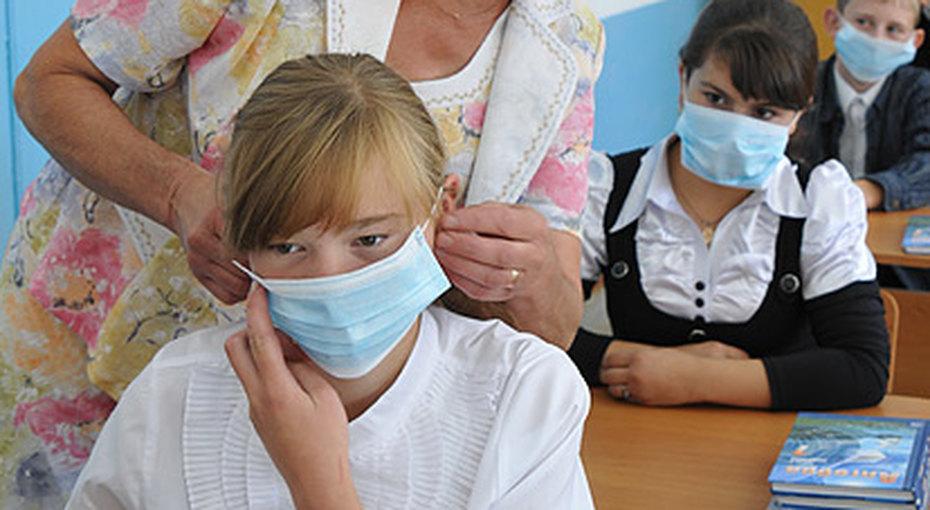 Свиной грипп закрывает школы