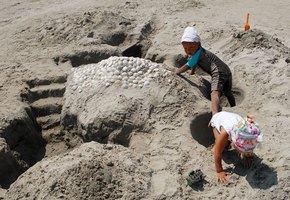 2-летняя девочка, пропавшая из песочницы двое суток назад, найдена