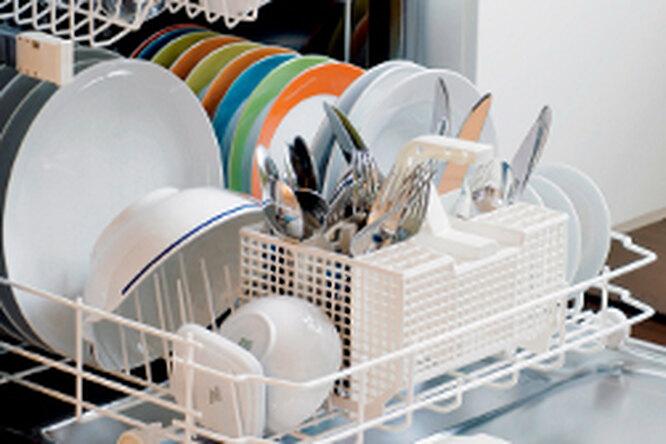 Посудомоечная машина вбыту