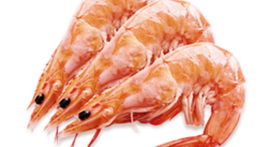 Правда ли, что невсе морепродукты полезны?