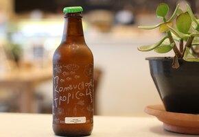 Не чайный гриб, а комбуча: чем полезен знакомый напиток?