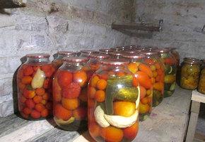 Осенние дачники-плодожорки. А что вы скажете?