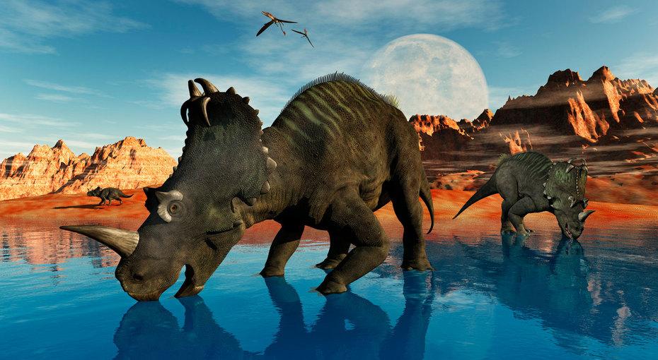 Не может быть! 76 миллионов лет назад динозавры страдали отчеловеческих болезней