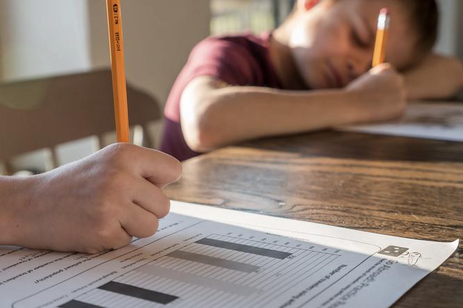 Стоит ли делать с ребенком домашние задания