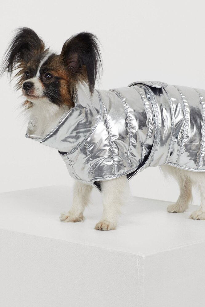 Утеплённая куртка, H&M,