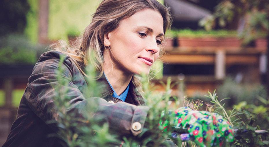 6 худших дачных вредителей: как сними бороться безприменения пестицидов