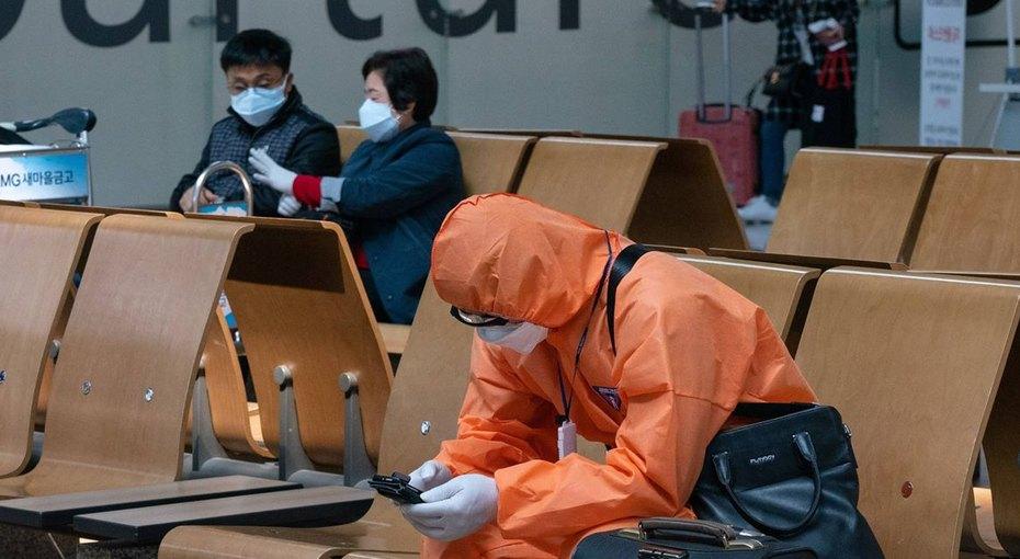 Летучие мыши ни причем: вКитае нашли нулевую пациентку, скоторой началась эпидемия