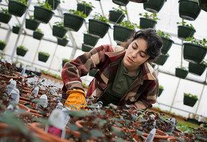 Календарь садовода: что посадить в мае и как подготовить семена к посадке