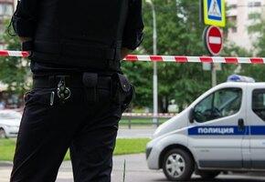 В Петербурге муж убил и расчленил 24-летнюю жену