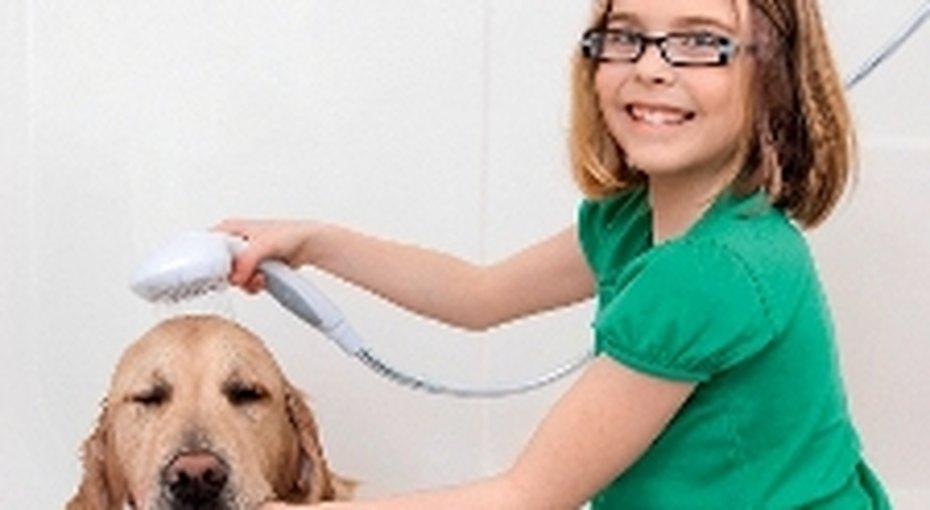 Как научить ребенка помогать подому