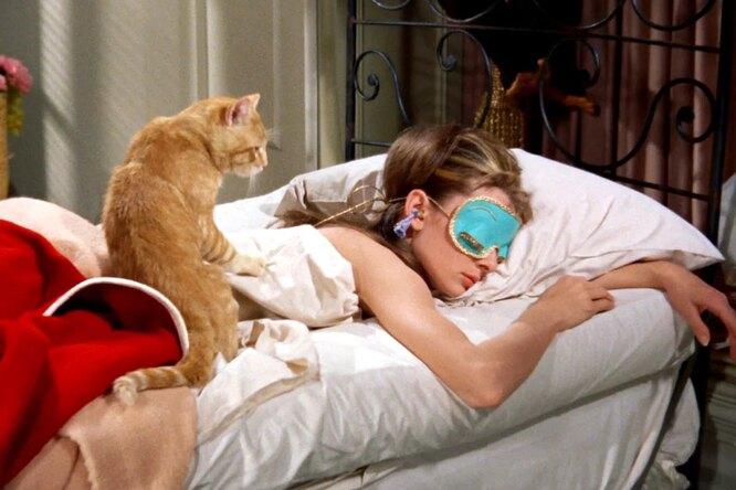 Невероятная жизнь рыжего кота из«Завтрака уТиффани»: тот, кого прогнала Холли