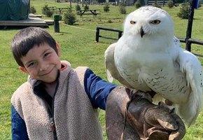 Семья 25 лет назад завела зверинец, который теперь помогает их внуку с аутизмом