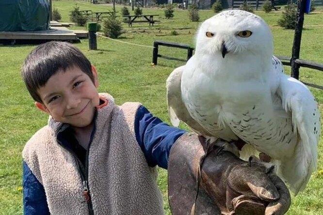 Семья 25 лет назад завела зверинец, который теперь помогает их внуку саутизмом