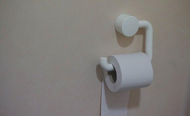 Туалетная бумага на держателе, почему нельзя долго терпеть в туалет