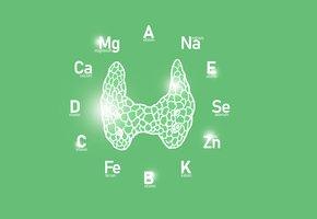 Еда для щитовидки: список самых полезных и вредных продуктов