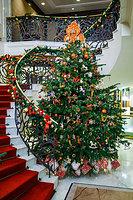 Новогодняя ель «Линия жизни» в третий раз становится символом праздника