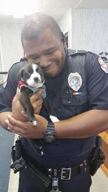полицейский со щенком