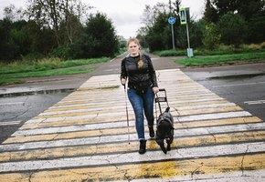 «Собака — не навигатор». Как лабрадор стал глазами девушки из Комсомольска-на-Амуре