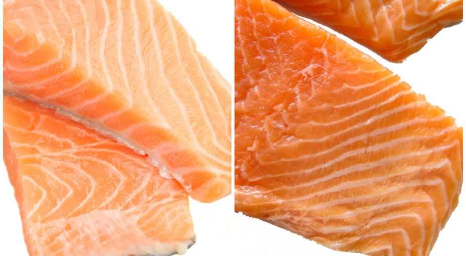 Какая красная рыба «правильная»?