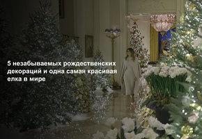 5 незабываемых рождественских декораций и одна самая красивая елка в мире (видео)