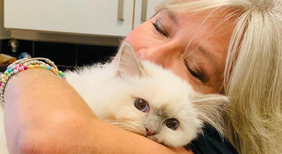 «Я просто хотела позавтракать»: кот 54-летней Саманты Фокс пытался отнять ее печенье (видео)