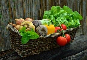 Полезная дача: как сад и огород влияют на наше здоровье
