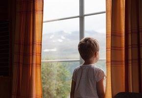 Власти Подмосковья раздадут многодетным и неимущим семьям затворы на окна для спасения детей